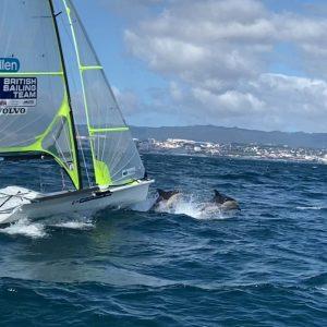 Dolphin Escort For 49er Sailors