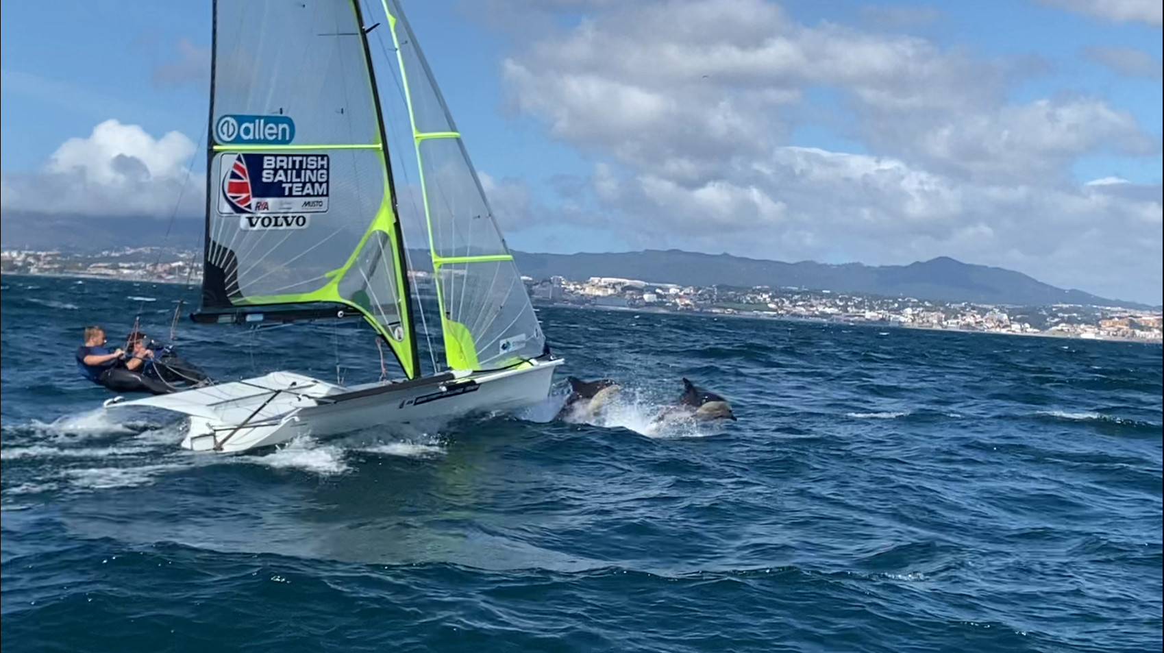 dolphins jump in front of a 49er skiff