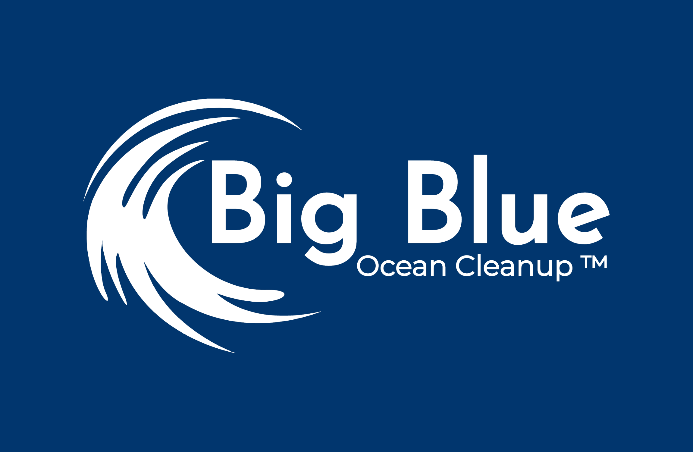 big blue ocean clean up logo